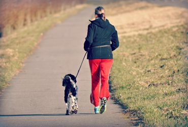 10 Amazing Ways To Exercise Your Dog
